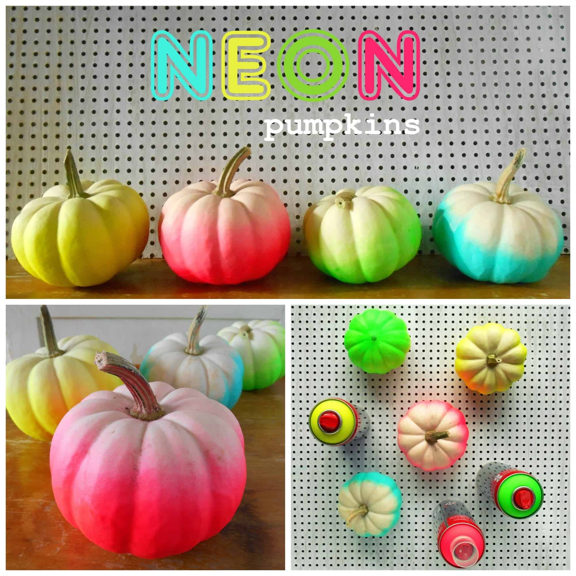 Funky neon spray painted mini pumpkins