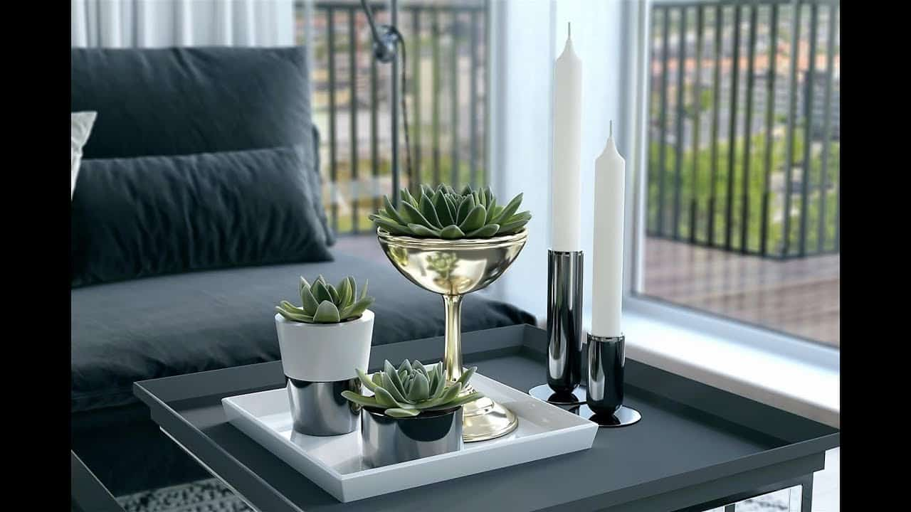 Modern succulent coffee table decor