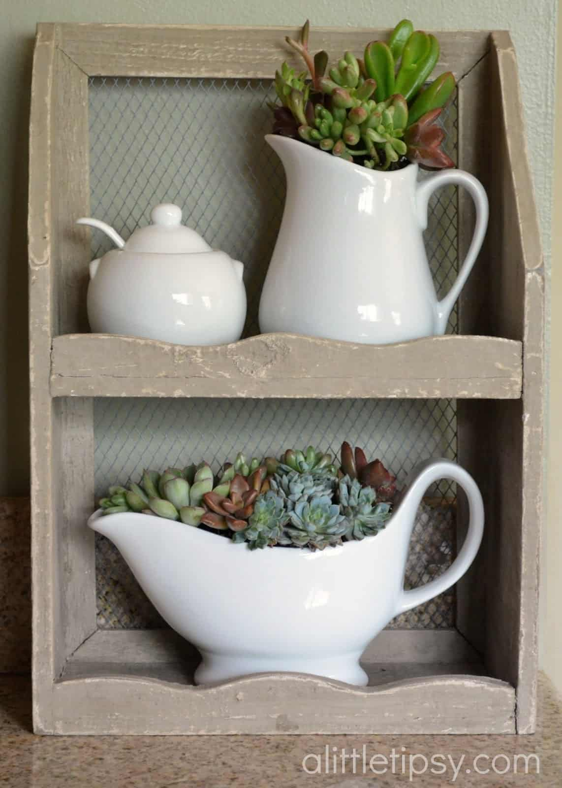 Cottage succulent kitchen decor