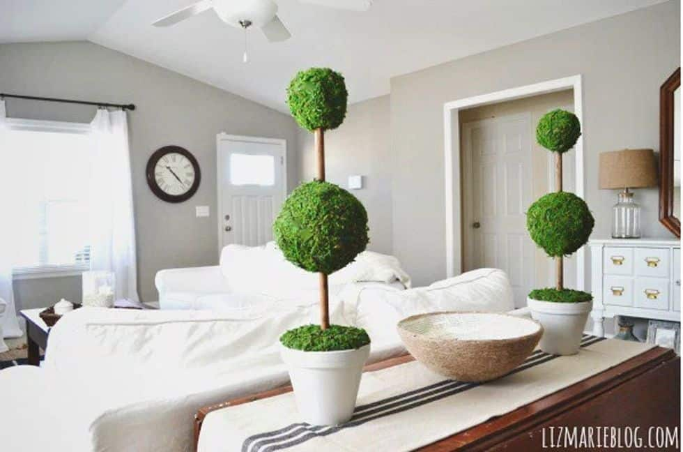 Diy moss topiaries