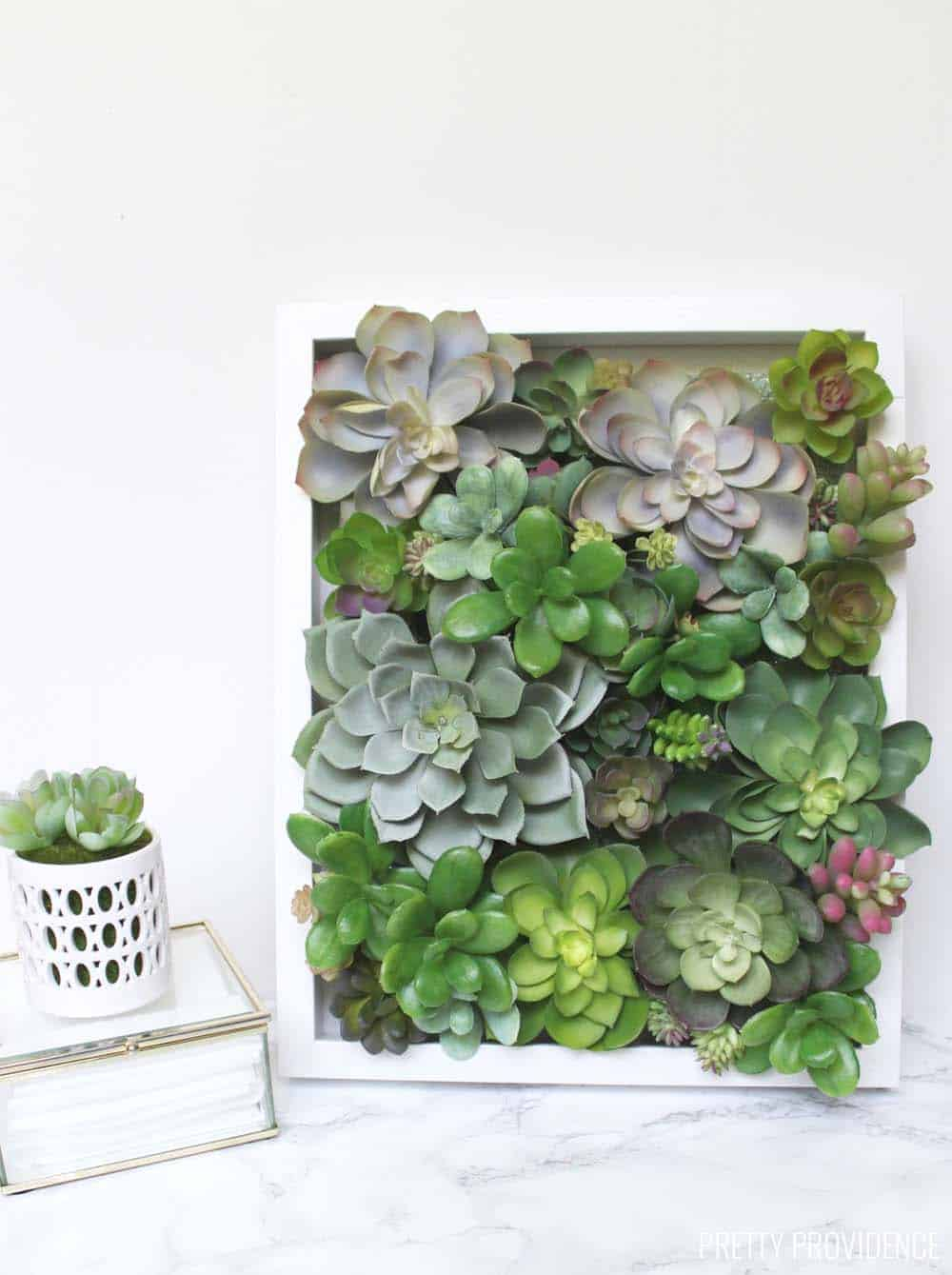Succulent shadow box decor diy