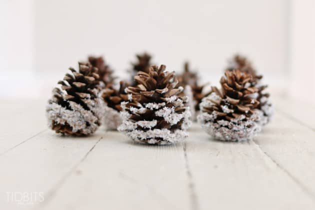 Diy farmyard snow covered pinecones