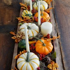 Pumpkin, candle, pinecone, and crenberry box