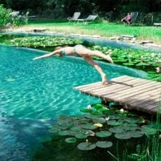 Diy natural pool