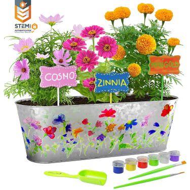 Dan & darci paint & plant flower kit
