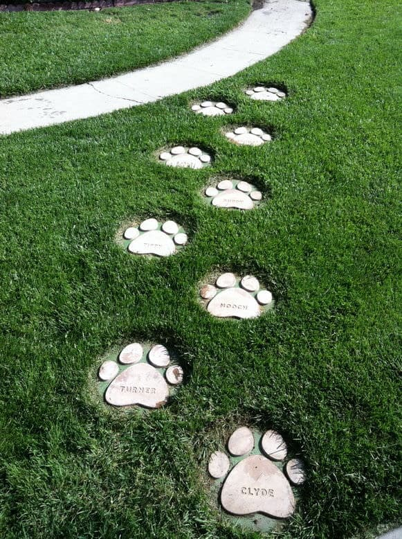 Dog paw and pet name stepping stones