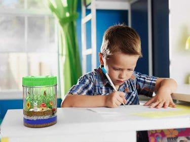 Mini light up terrarium kit