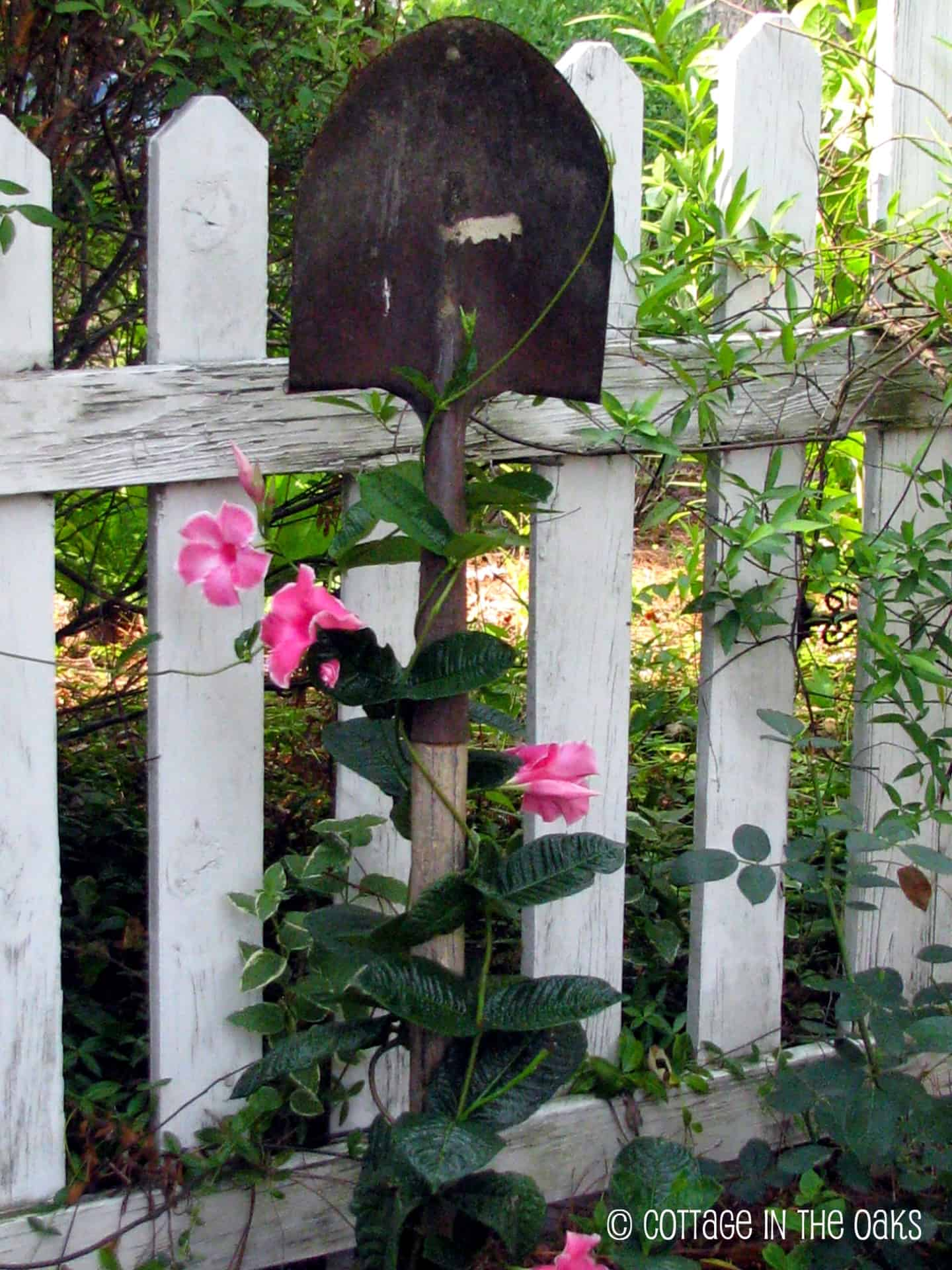 Old garden tool trellis