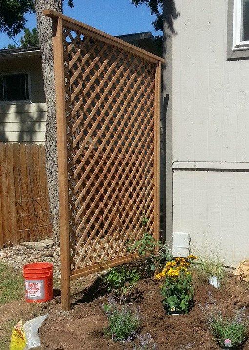 Simple backyard cedar trellis