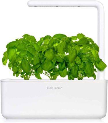 Click & grow smart garden kit