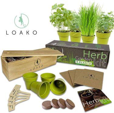 Loaka indoor herb garden kit