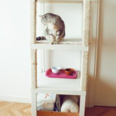 Cat condo from stacked ikea tables