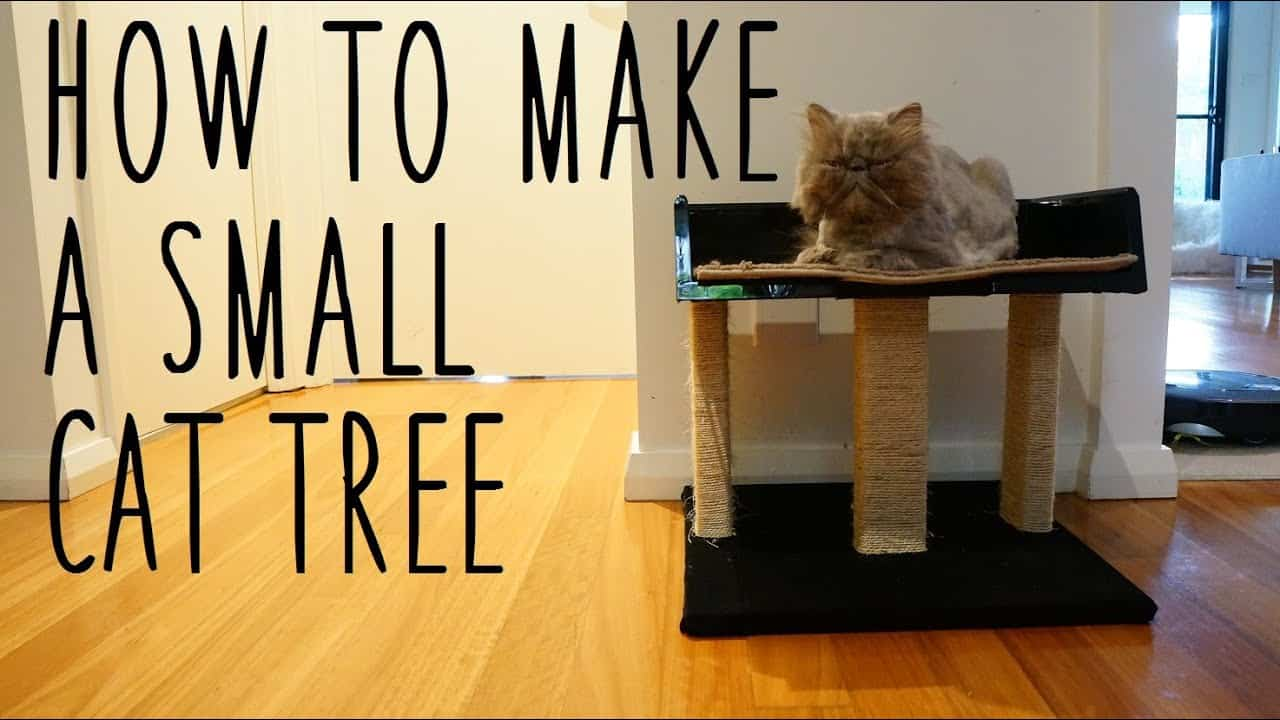 Small, low cat tree