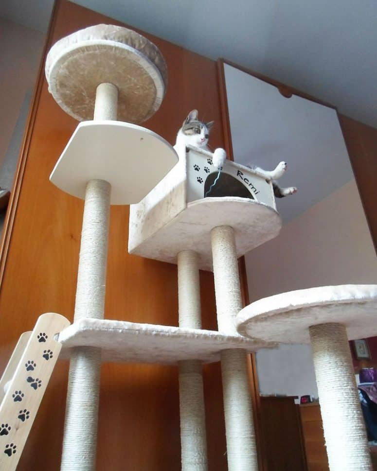 Tall cat tree with a cat house