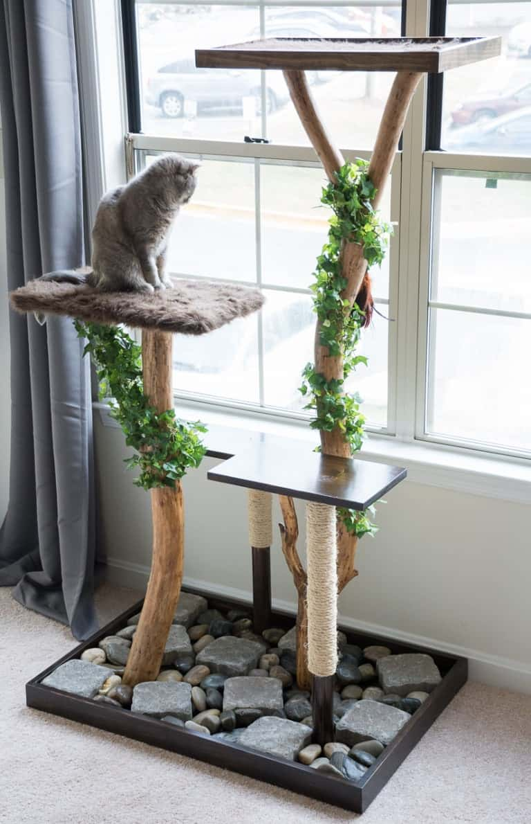 Zen garden cat tree