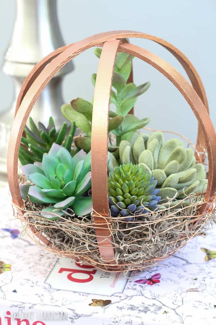 Embroidery hoop diy terrarium