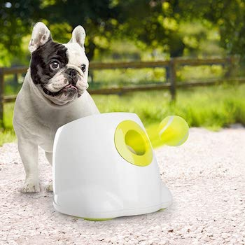 All for paws interactive automatic ball launcher