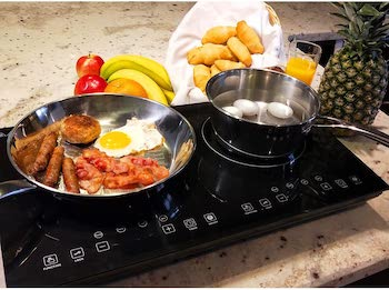 Evergreen home double digital induction countertop cooker