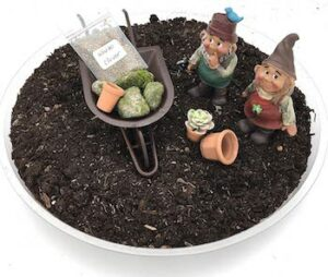 Diy gnome garden kit