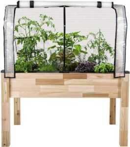 Elevated cedar planter with greenhouse cover