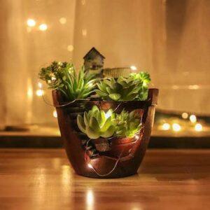 Fary garden succulent pot