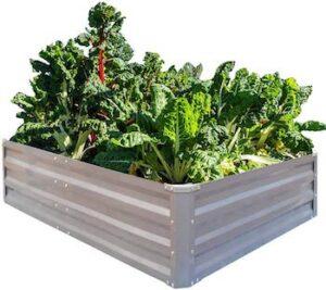 Galvanized raised garden beds