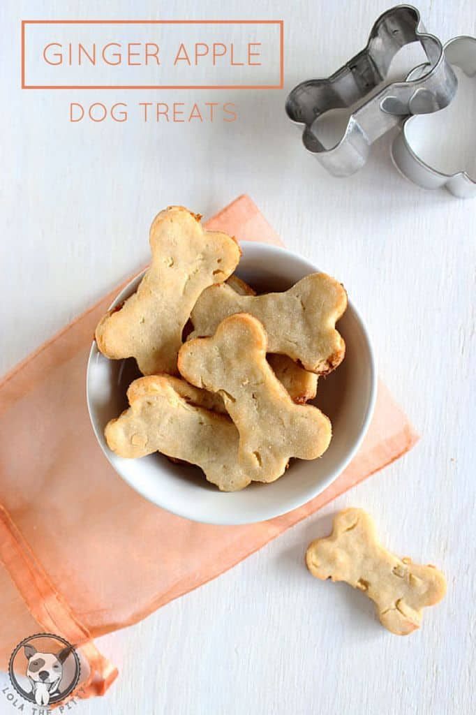 15 Simple Homemade Dog Treats You Should Try