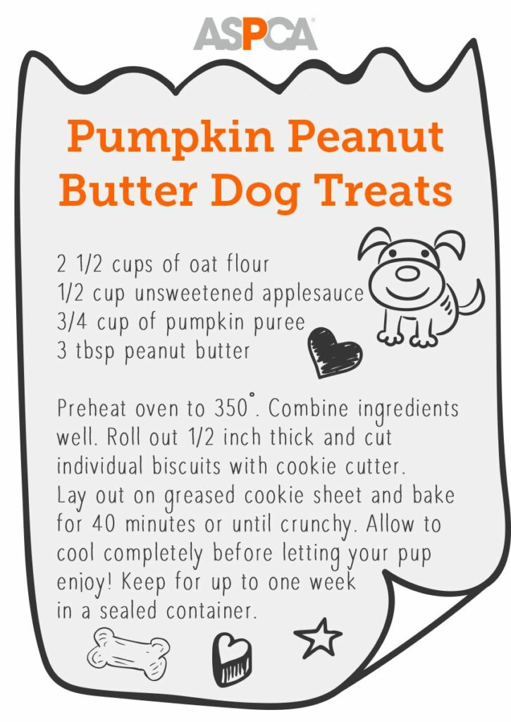 Pumpkin peanut butter dog treat