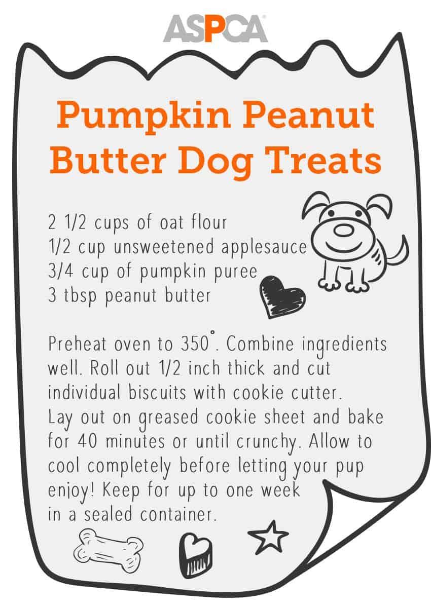 Pumpkin peanut butter dog treat