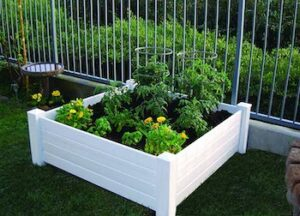 Raised 48 by 48 by 15 inch garden box kit
