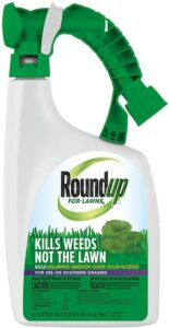 Ready to spray roundup for lawns