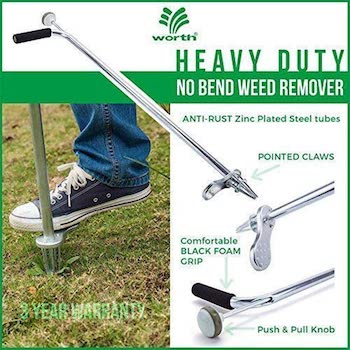 Stand up weeder and root removal tool