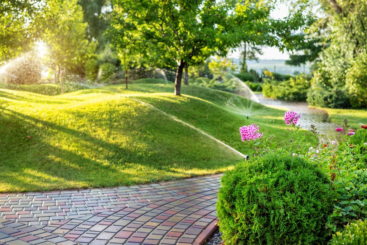 Best Backyard Sprinklers