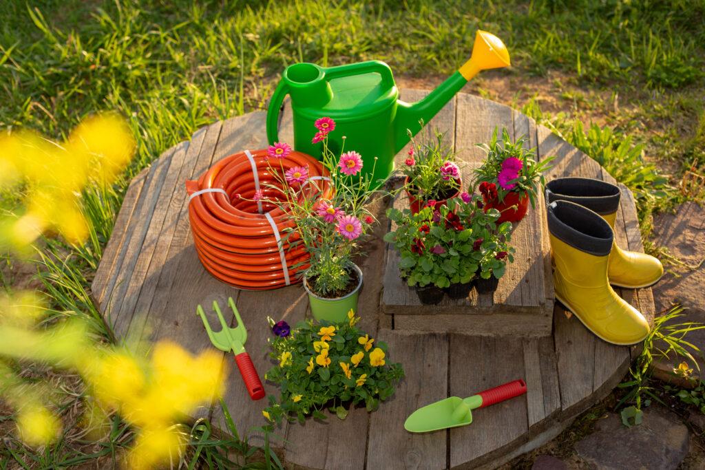 Best Gardening Kits