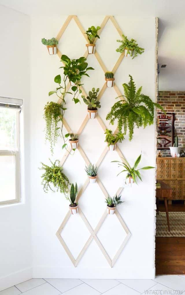 Leather and wood trellis vertical garden