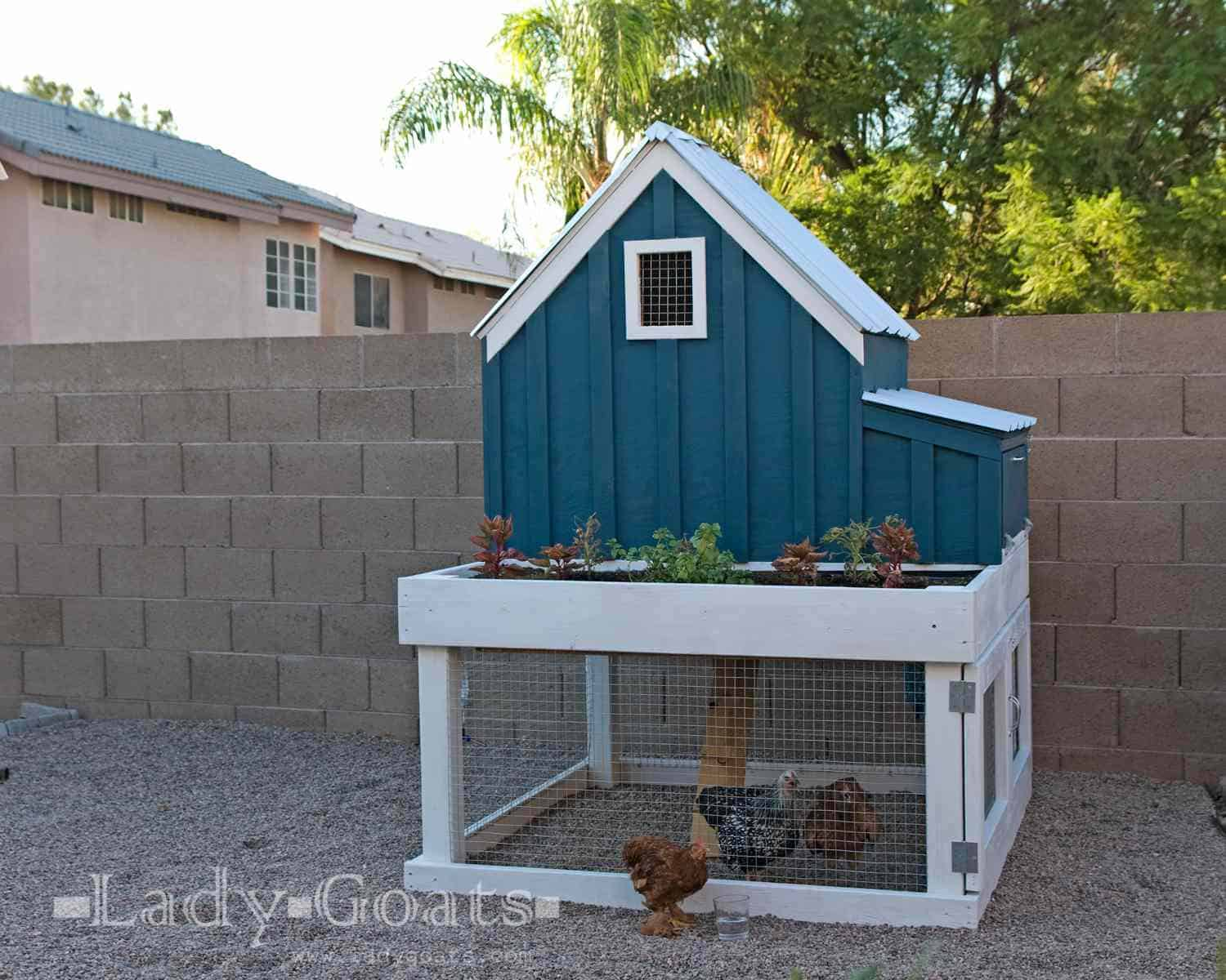 Small two story chicken coop plans