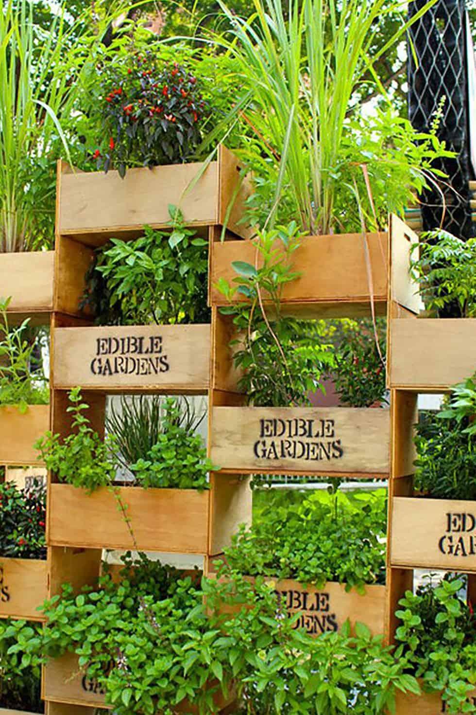 Vertical garden stacked crates