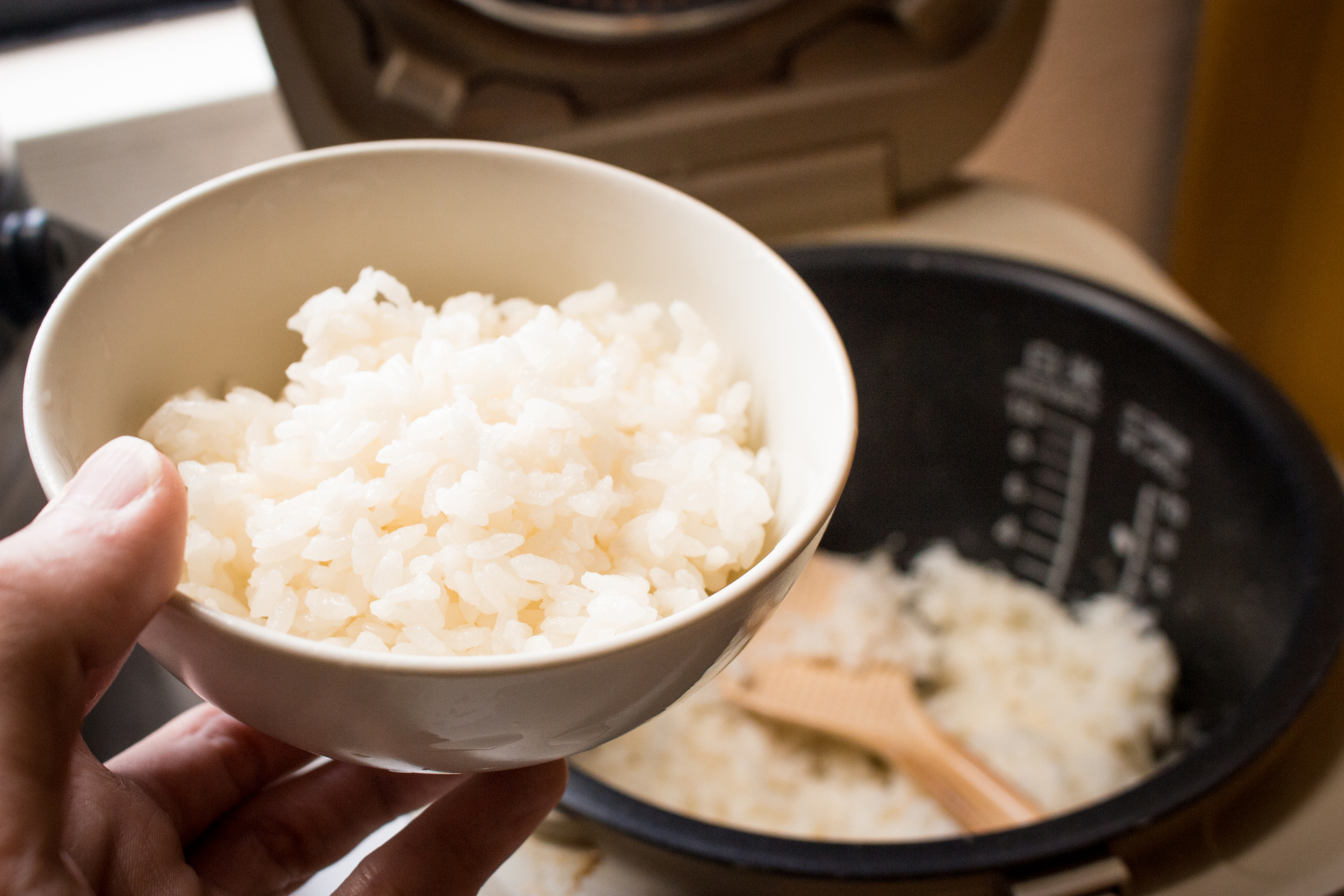 Japanese steamed rice in bowl with rice cooker
