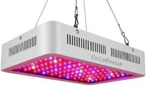 ColoFocus 600W LED Indoor Plants Grow Light Kit