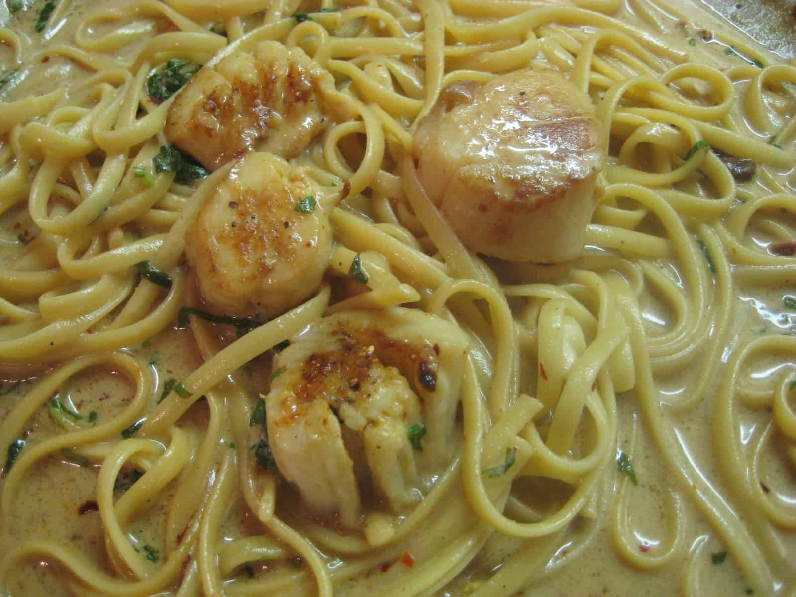 Fettucine with bay scallops
