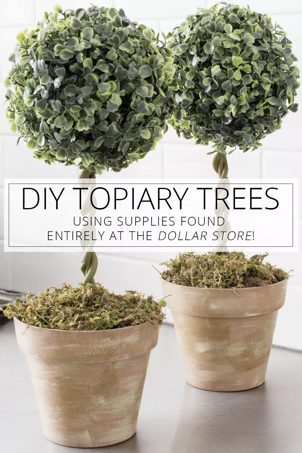DIY Topiary Trees - Dollar Store Project