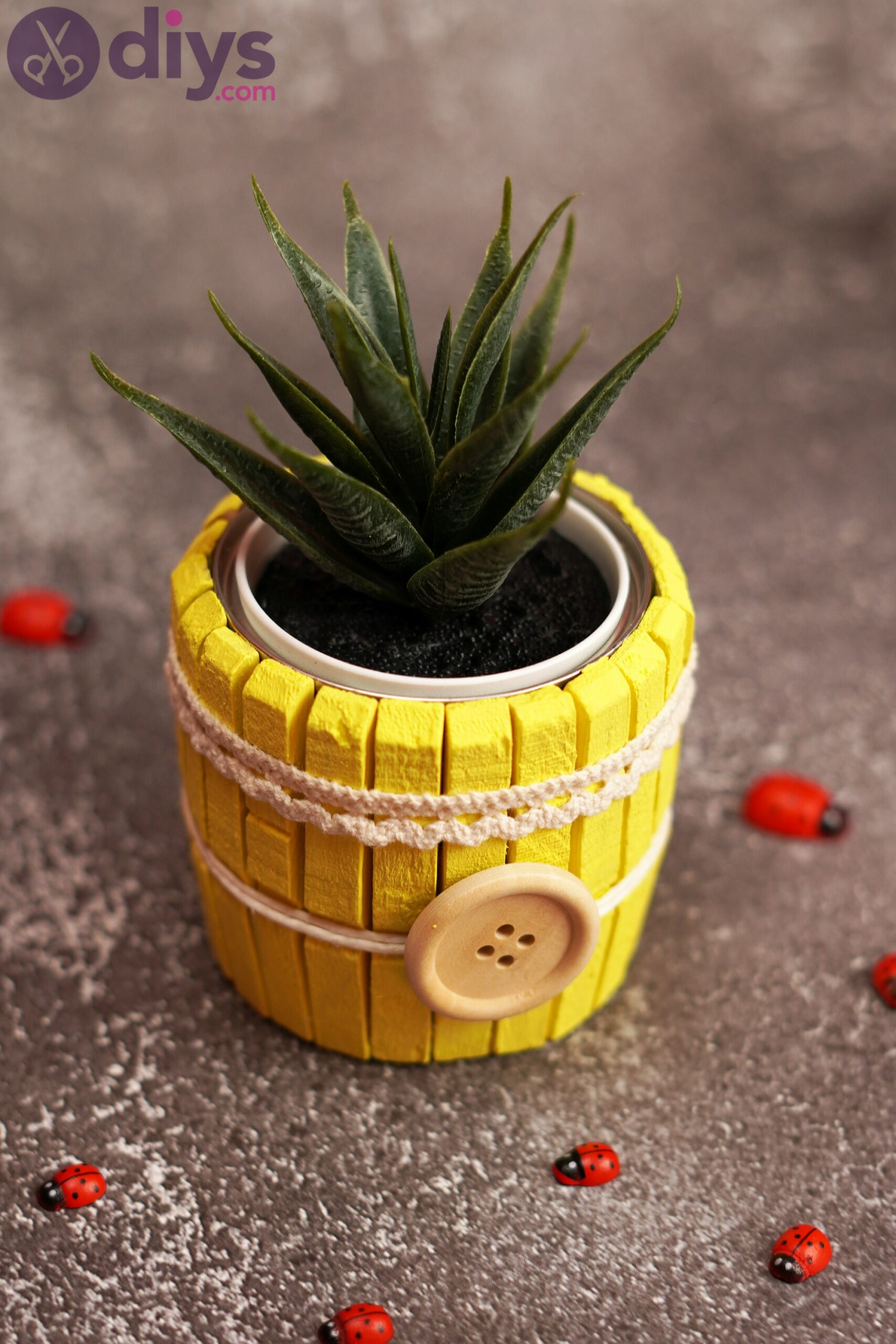 Clothespin pot pics (2)