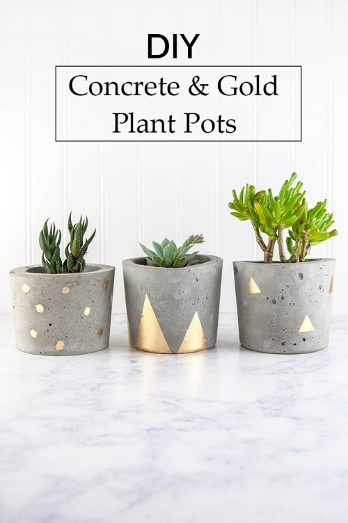 Concrete and gold planters