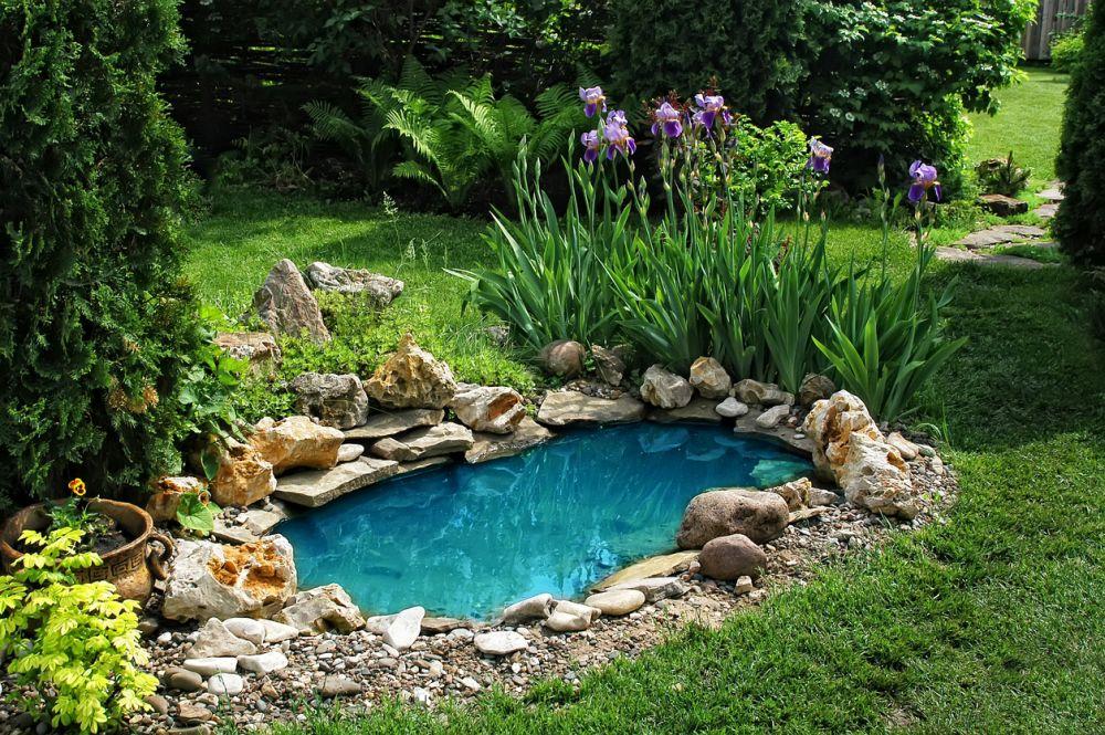 Best Pond Pumps