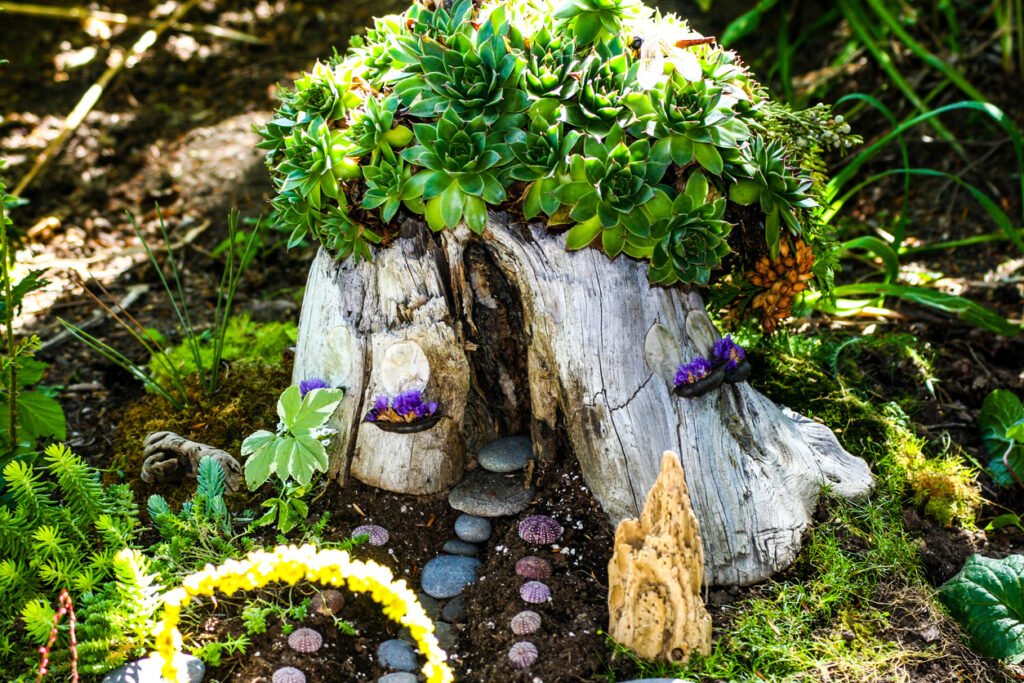 Tree stump fairyhouse with succulents