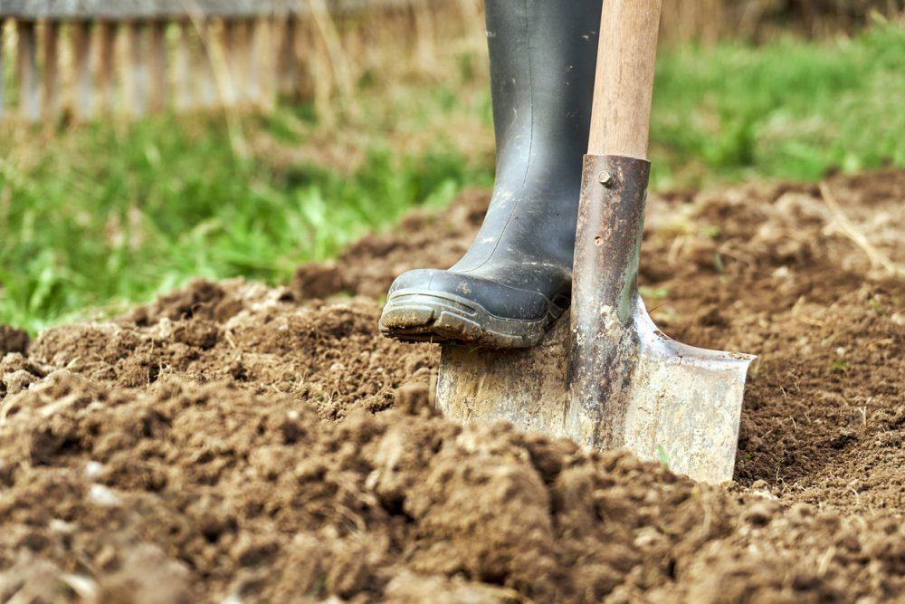 Help fix clay soil