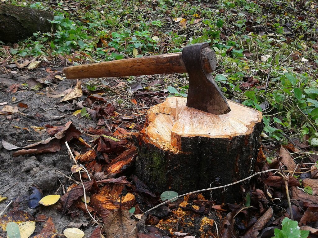 Tree Stump Killer