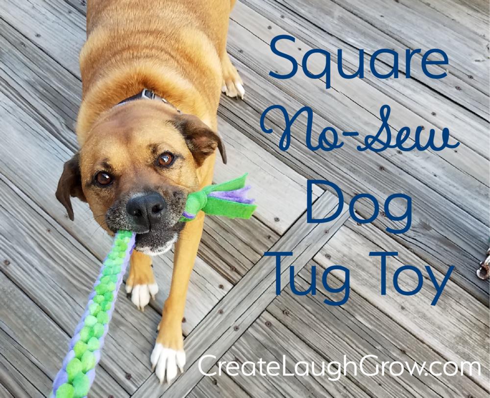 No sew dog toy