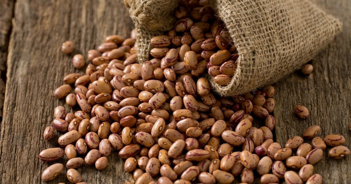 Can You Freeze Pinto Beans?
