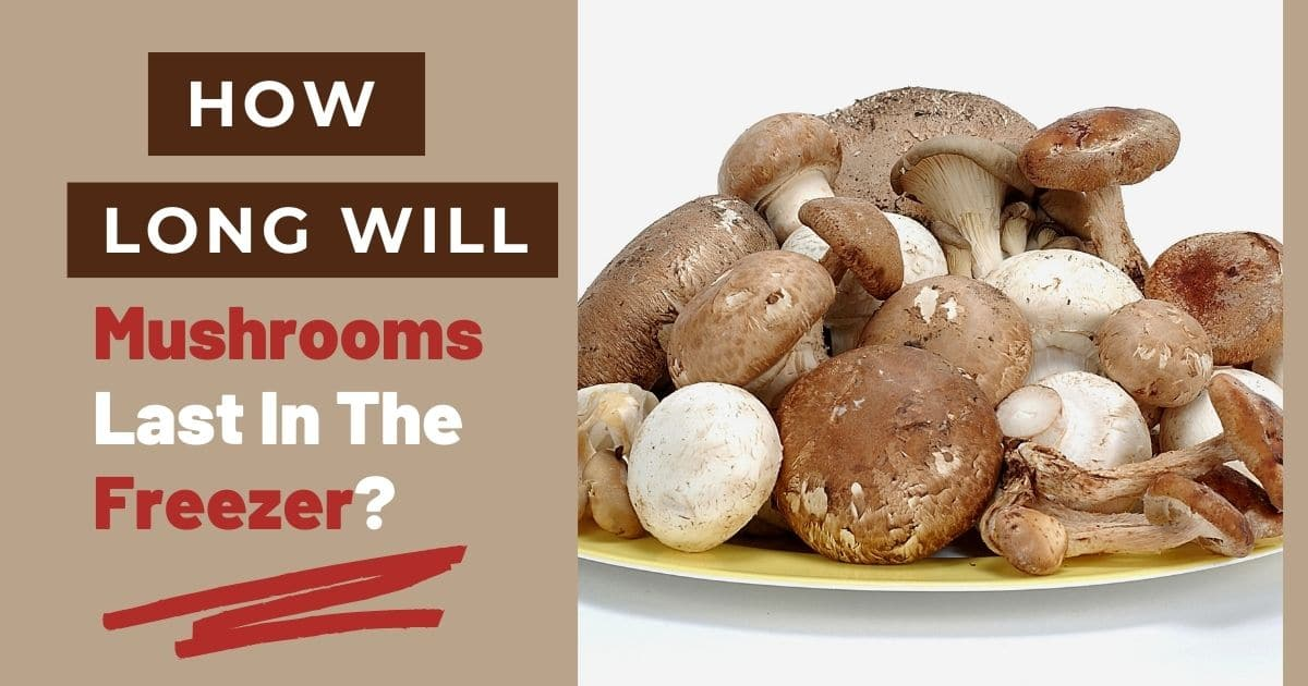 """A banner with the words """"how long will mushrooms last in the freezer?"""